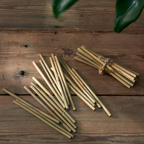 Rivièra Maison Bamboo Bliss Deco Sticks